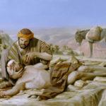 irgalmas szamaritánus