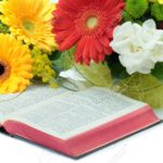 101540496-meditaion-time-with-bible-and-flowers