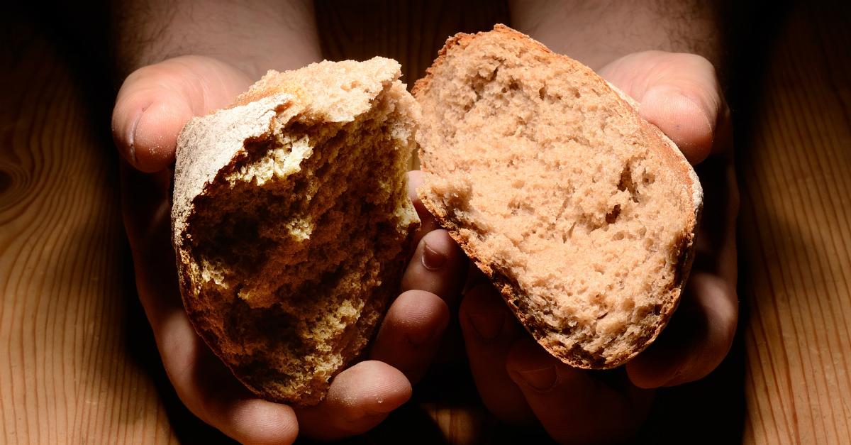 """Elég egy falat vagy az """"élet kenyerét"""" keresed?"""